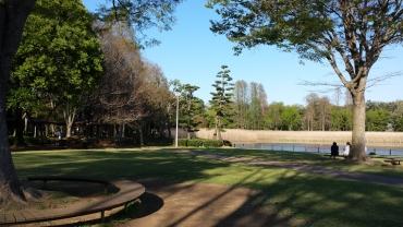 Doho park